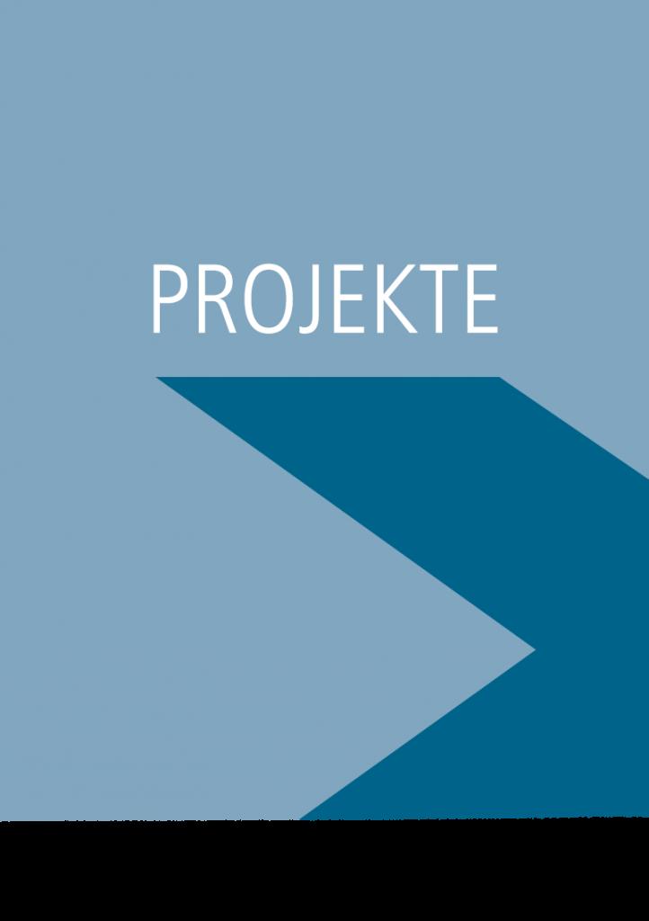 Hetzler_Stiftung_Suchtforschung_Suchtpraevention_Kasten_Projekte