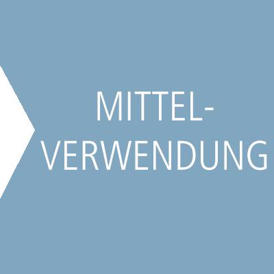 Hetzler_Stiftung_Suchtforschung_Suchtpraevention_Kasten_klein_Mittelverwendung