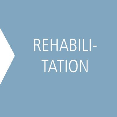 Hetzler_Stiftung_Suchtforschung_Suchtpraevention_Kasten_klein_Rehabilitation